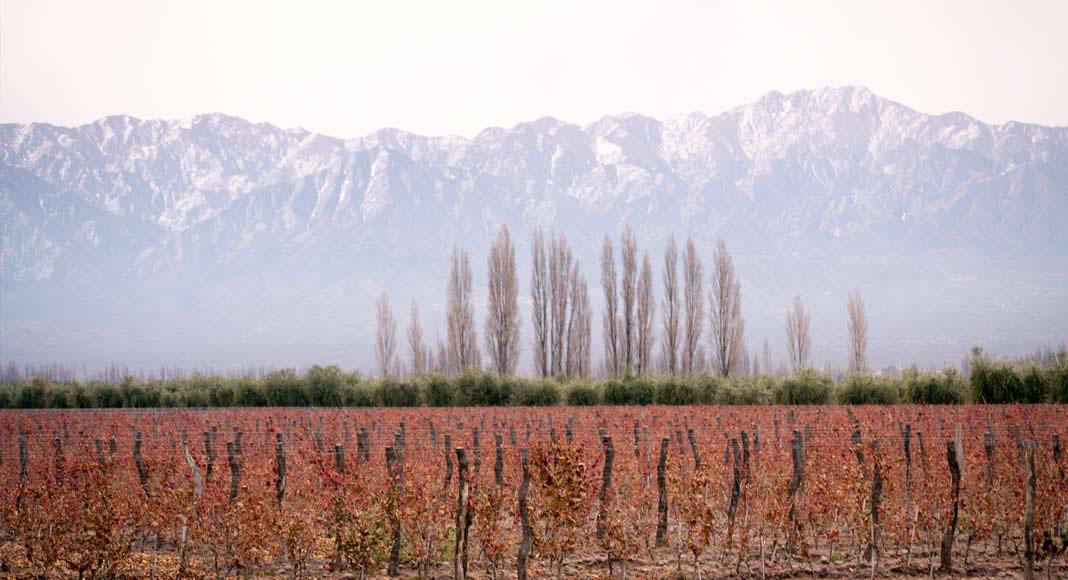 Tips para viajar a Mendoza