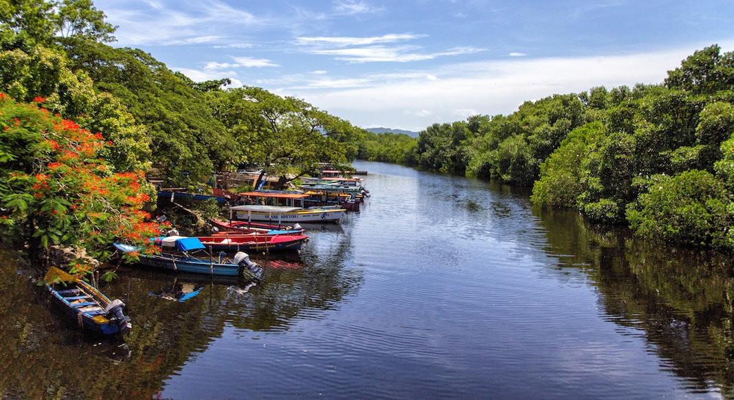 Imperdibles de Jamaica