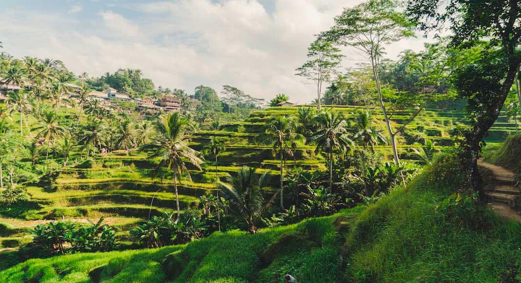 Imperdibles en Indonesia
